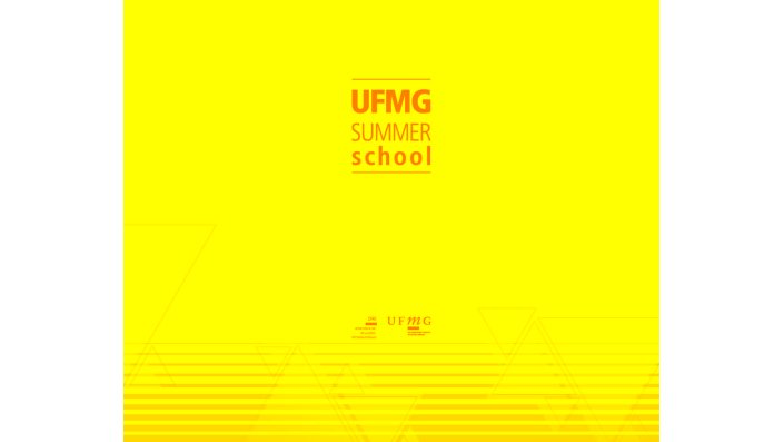 UFMG Summer School